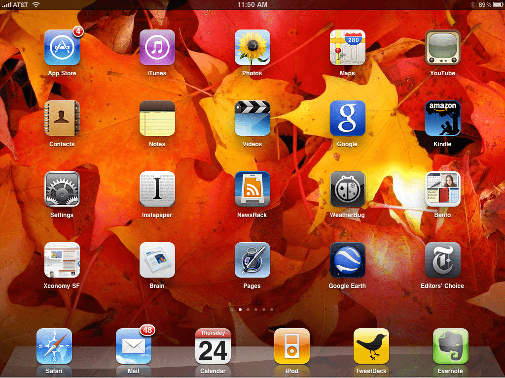 The home screen of Wade's iPad
