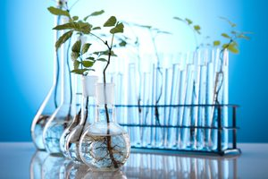 Mid-Priced Biotechnology Companies Bloom As M&A Targets in 2013