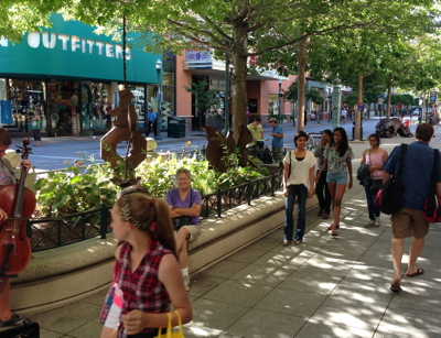 Santa Cruz's leafy downtown main street, Pacific Avenue, is home to numerous startups
