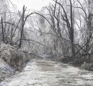 2009 Ice Storm, Natural Disasters, Extreme Weather