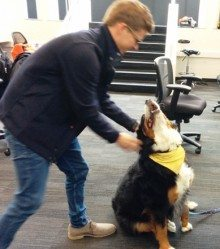 Techstars Seattle's Anders Maul with office dog FIFA.