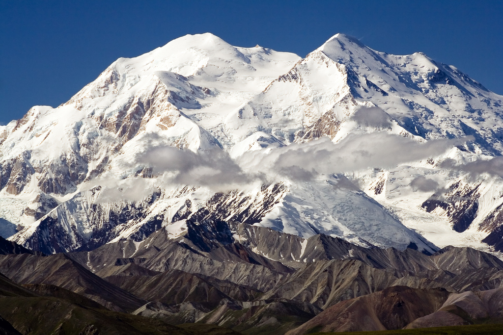 Denali Rises With $217M and Genentech Alumni to Fight Brain Diseases