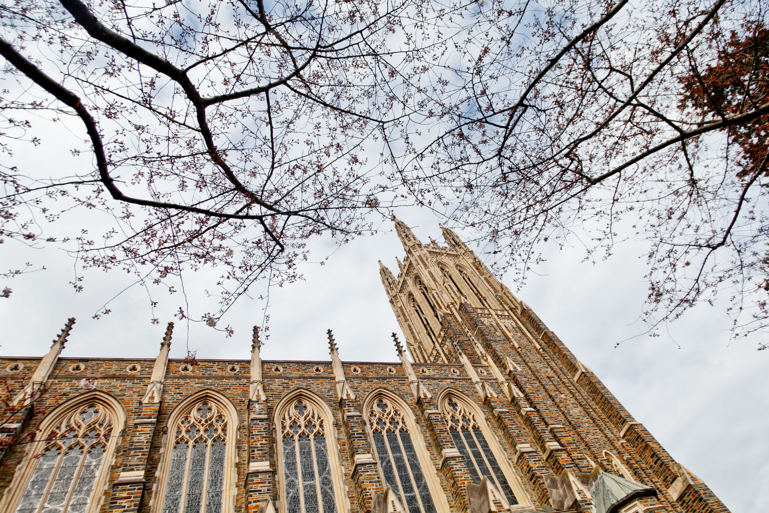 Duke Chapel, by Danny Fowler