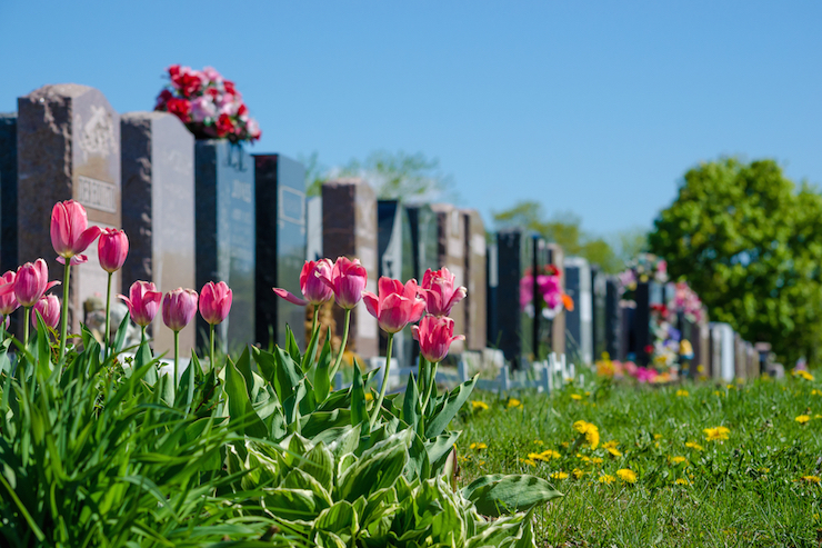 Deathtech Rising: Mylestoned Unveils Interactive Memorial Software