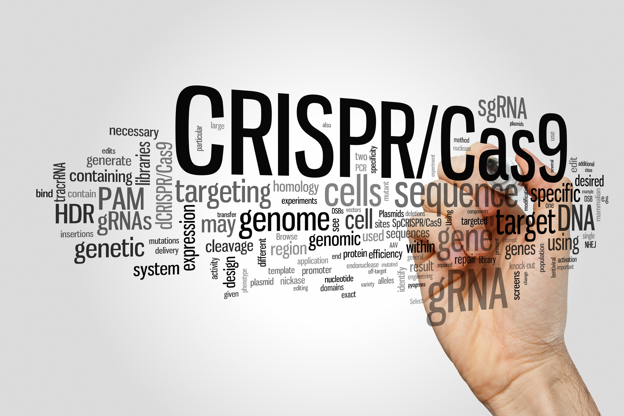 CRISPR/Cas9 system for editing, regulating and targeting genomes