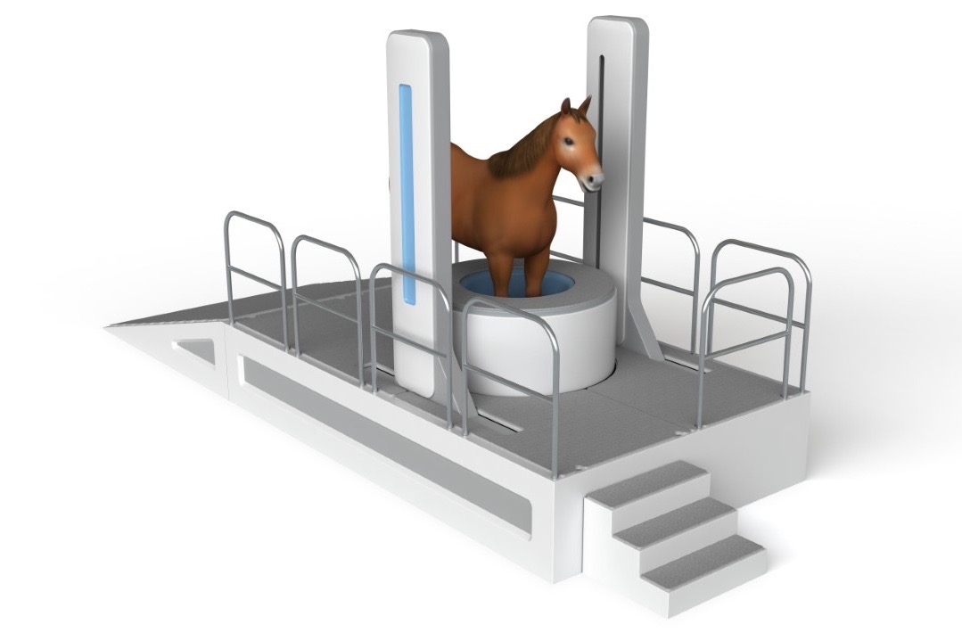 Asto CT Envisions Better Imaging Tech for Horses, Other Animals