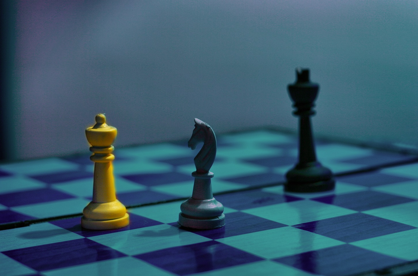 xconomy  checkmate pharma clinches  27m for more studies