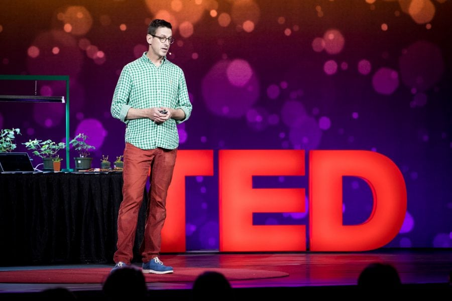 TED Stage 1