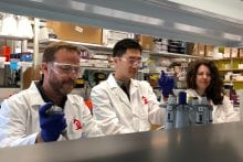 Catalog Hauls In $9M to Make DNA-Based Data Storage Commercially Viable