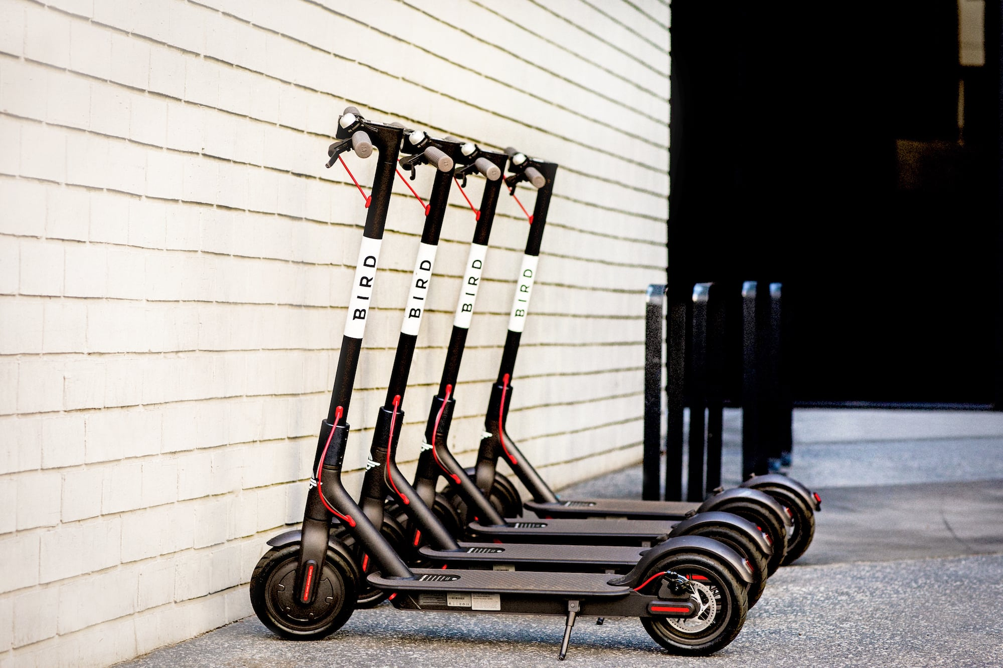 Bird-electric-scooters