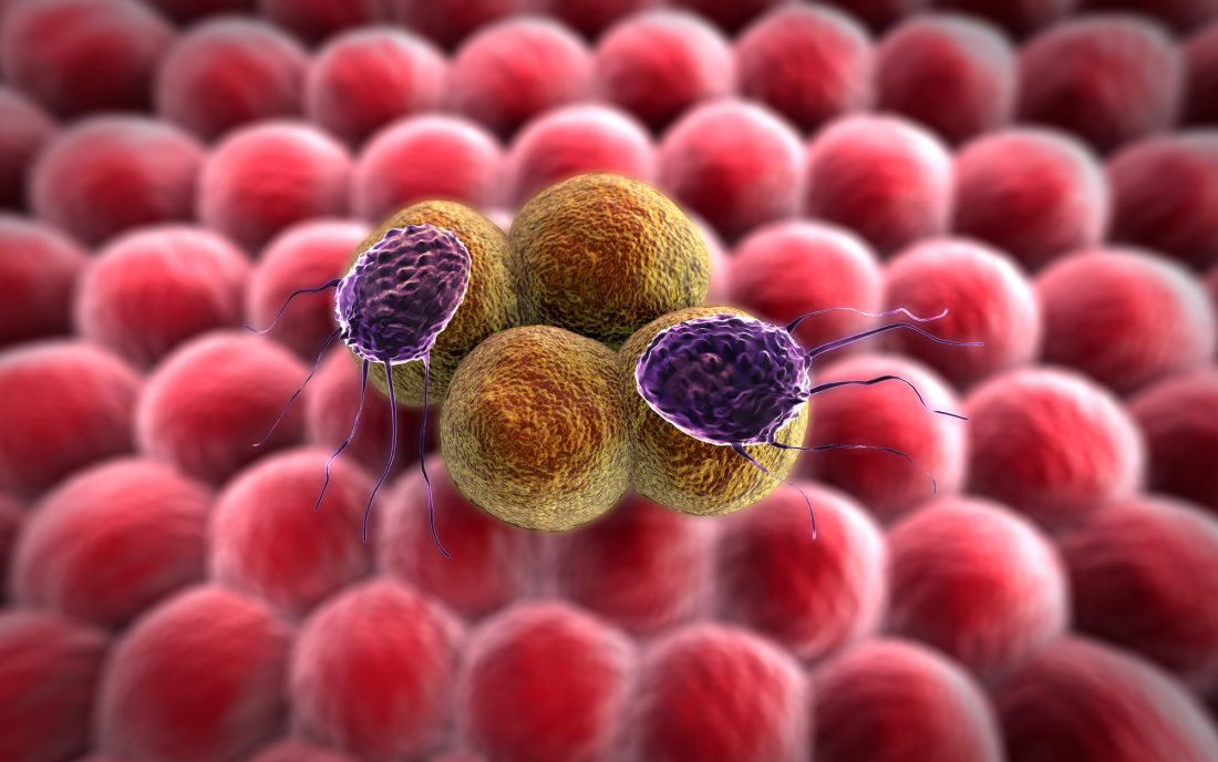 Akrevia Launches with $30M for Next-Gen Cancer Immunotherapy