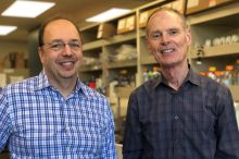 With $9.5M, Intrepida Bio Launches to Target Pancreatic Cancer & More