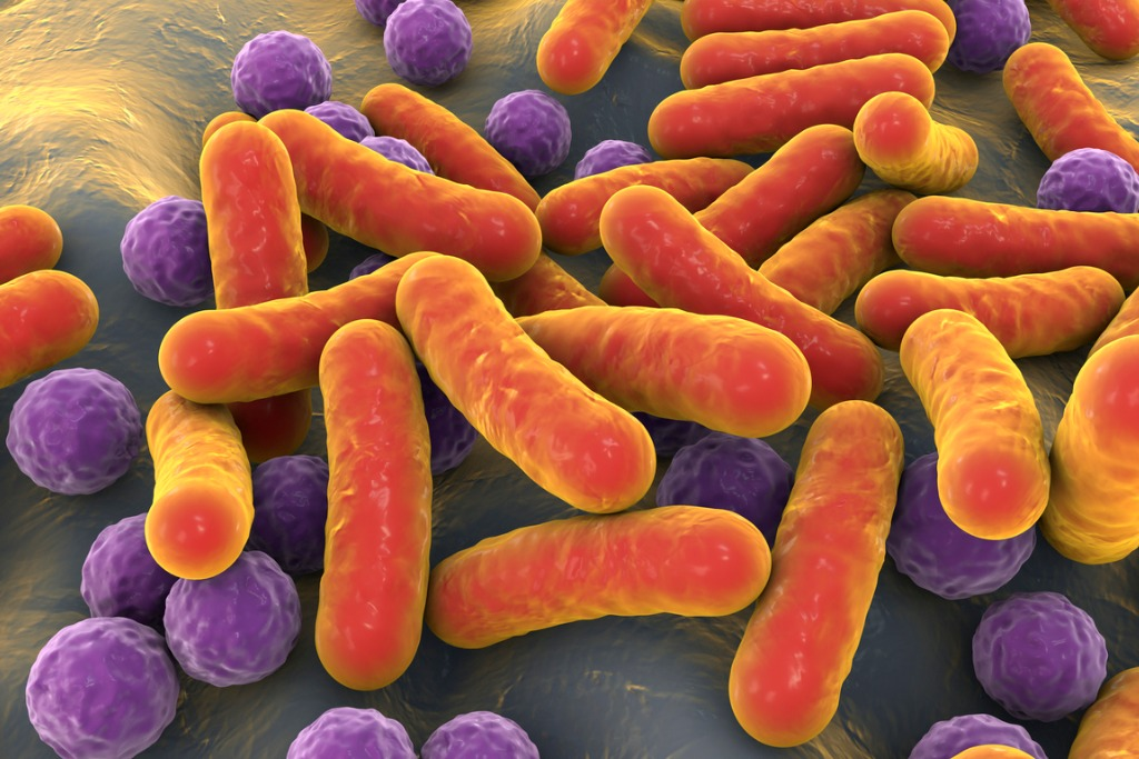 bacteria-human-microbiome-picture-id1277347358